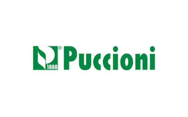 logo-boxed-_0002_puccioni-logo